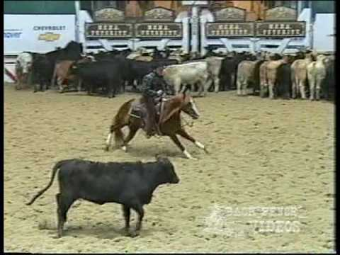 Spots Hot - 2004 NCHA Open Futurity champion