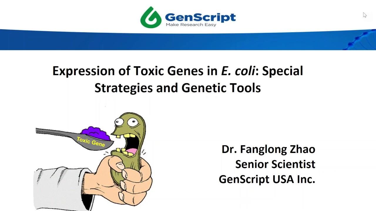 Expression of Toxic Genes in <em>E  coli</em>: Special