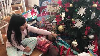 What we got for Christmas 2018