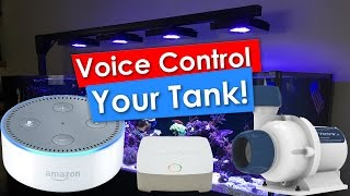 Voice controlled Reef Tank using Amazon Alexa Echo Dot, Ecotech Reeflink and a Vectra M1