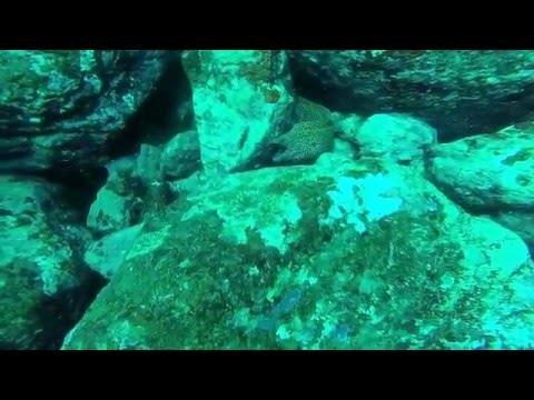 Diving at hikkaduwa with International Diving School