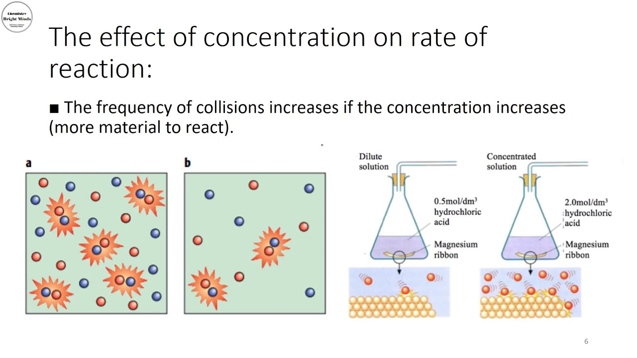 what factors affect the rate of any given reaction
