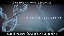 Best Insect Control Mayer AZ