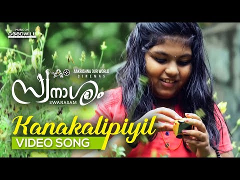 kanakalipi video song swanasam malayalam movie nikhil prabha vidhu prathap