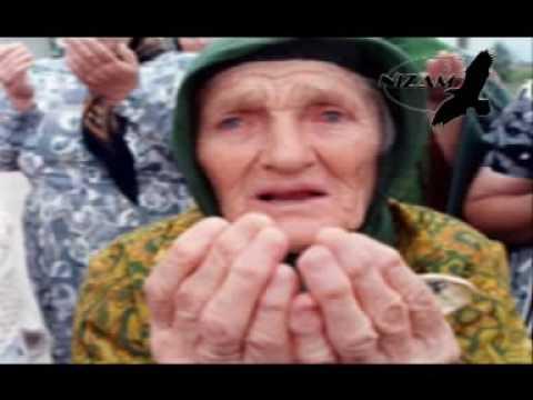 Али Димаев - Бусулба сан Нохчий чоь