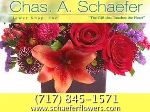 Schaefer Chas A Flower Shop Inc, York, PA