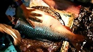 Amazing Cutting Fish | Fastest Big Carp Fish Cutting | Big Carp Fish Fillet