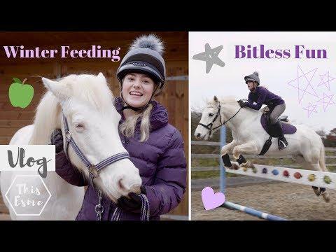 Vlog | Winter Feeding, Mickey walks, Bitless fun + Hay Steamer | This Esme