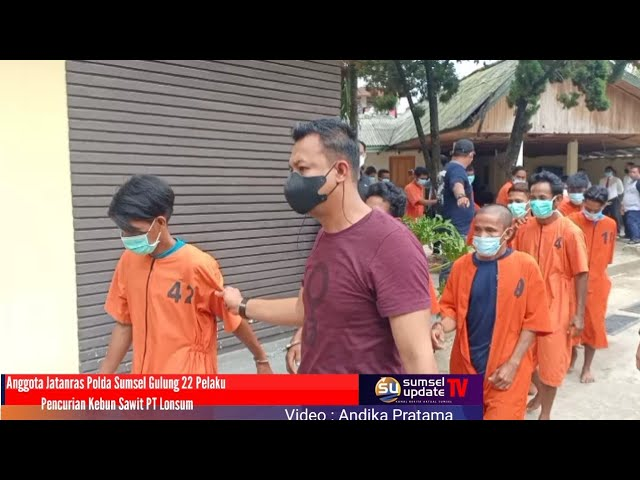 Anggota Jatanras Polda Sumsel Gulung 22 Pelaku Pencurian Kebun Sawit PT Lonsum