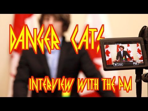 Danger Cats - Interview With The PM #2