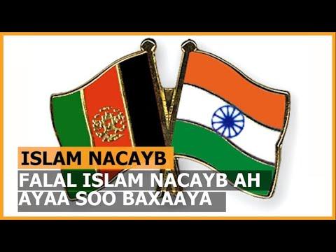 Download Falalka Islaam Nacayb Ah Ayaa Kor U Kacay Dunida Ka Dib Markii Ay Talibaan La Wareegeen Afghanistan