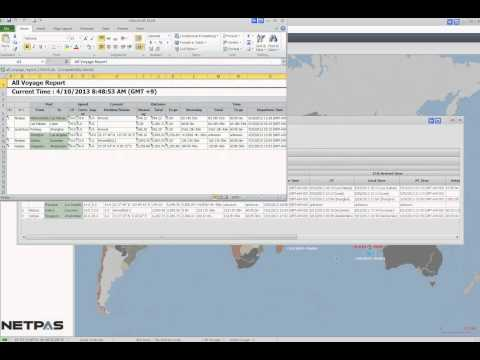 How to Create Voyage or Fleet Report in Netpas Vessel Monitor