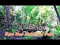 Amazing Thailand - Phetchabun - Nam Nao National Park