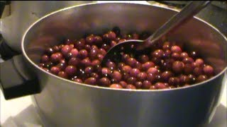 Canning Cranberry Sauce