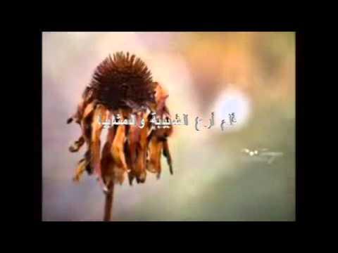 Anal-Abdul Nasheed By Al afasy Amazing English Lyrics By Arif Zia