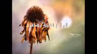 Anal-Abdul Nasheed By Al afasy Amazing English Lyrics By Arif Zia