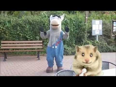 ERLI TV (2015) Hamster singt den Erli Song
