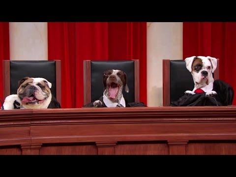 United States v. Bormes: Oral Argument - October 02, 2012