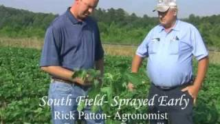 North Carolina Soybean Production, Green Crop Booster