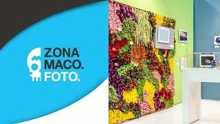 El talento de Flores Cosmos en Zona Maco Foto 2015