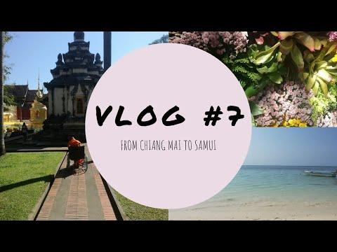 [ FROM CHIANG MAI TO SAMUI #7 ] En Tongs à Paris, Je Vous Parle De Mes Projets