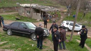 Göygöl polisi NARKOPLANTASİYA aşkar edib