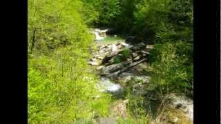 Геленджик-2012(, 2012-05-08T17:31:46.000Z)