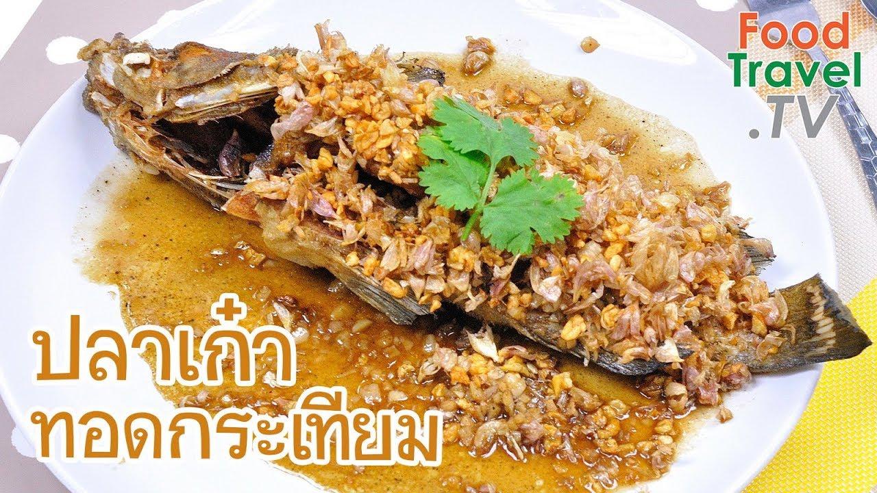 ปลาเก๋าทอดกระเทียม ปลาทอดกระเทียม   FoodTravel ทำอาหาร - YouTube