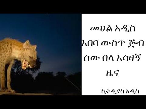 ETHIOPIA -አዲስ አበባ ከተማ ውስጥ ጅብ ሰው በላ- በጣም የሚሰቀጥጥ ነው