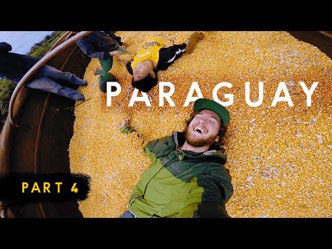 How Farming Helps The Aché Survive — Inside Paraguay