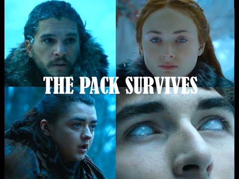 Jon Sansa Arya and Bran | The Pack Survives