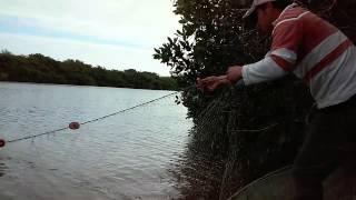 De pesca en rancho nuevo aldama tamaulipas..