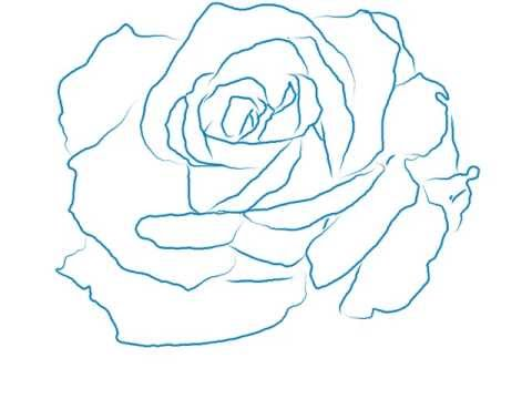 how to draw a beautiful rose line drawing youtube rh youtube com rose arterial line rose line artwork