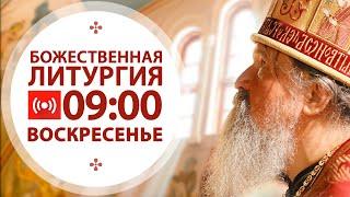 Трансляция: Литургия. 09:00 (воскресенье) 29 ноября 2020
