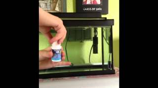 Marina 10 Gallon Aquarium Set-up/ Review
