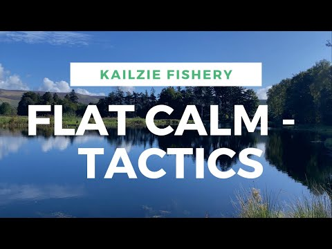 Flat Calm - Tactics, Stillwater Fly Fishing At Kailzie