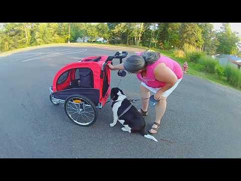 Aosom Pet Stroller and Bike Trailer