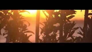 Roald Velden - Watching The Sunset  Preview
