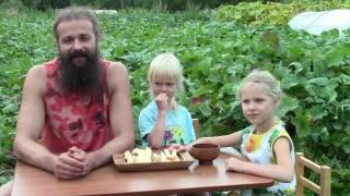 видео Выращивание брюквы в открытом грунте