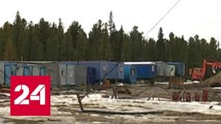 Вахтовиков бросили без еды в окружении белых медведей