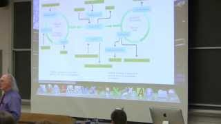 #35 Biochemistry Lecture (Nitrogen and Amino Acid Metabolism) from Kevin Ahern
