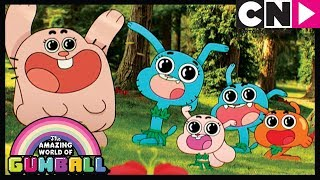 Gumball | Anais' Cennet | Çek | Cartoon Network