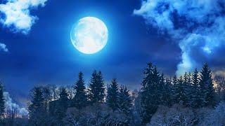 Sleep Music, Meditation Music, Calm Music, Relaxing Music, Spa, Sleep Meditation, Zen, Sleep, ☯2040