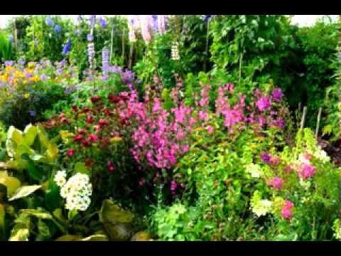 English cottage garden design ideas - YouTube
