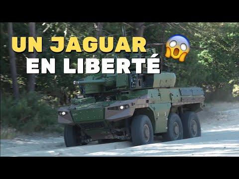 Tests de mobilité, le Jaguar sort ses griffes !