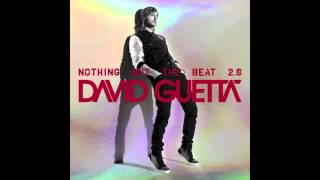David Guetta Play Hard Feat Ne Yo Akon Original Mix