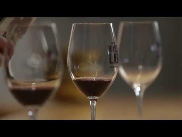 Food and Travel Oregon Wine Lab