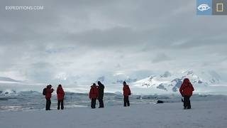 A Peek Into History on Detaille Island | Antarctica | Lindblad Expeditions-National Geographic