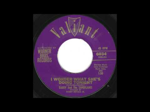 Barry and The Tamerlanes - I Wonder What She's Doing Tonight - Early 60's Uptempo Doo Wop