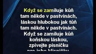 Dětské písničky - Když se zamiluje kůň (karaoke z www.karaoke-zabava.cz)